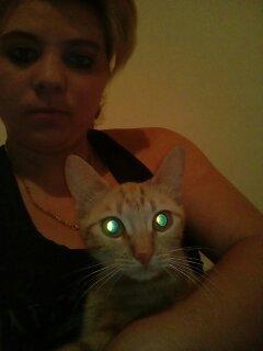 mon chats