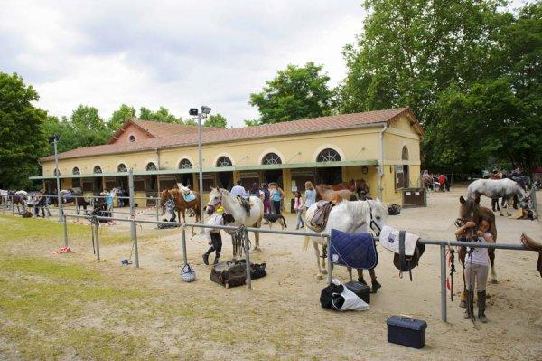 Centre Equestre de Vincennes !