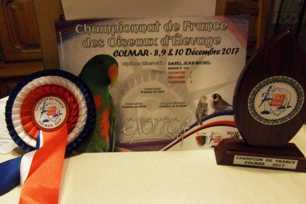 Résultat concours national de Colmar