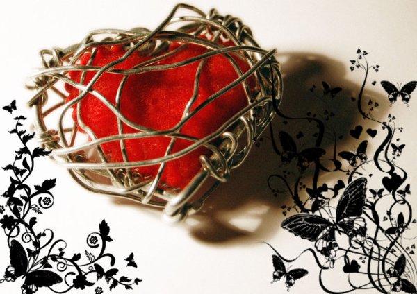 Le Coeur a ses raisons...que la Raison ignore