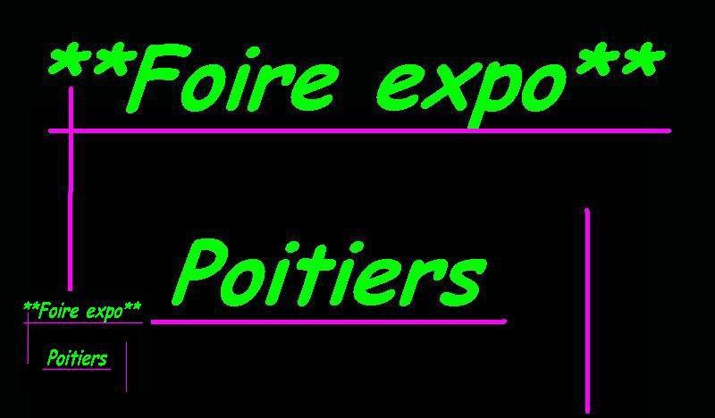 Blog de foireexpopoitiers