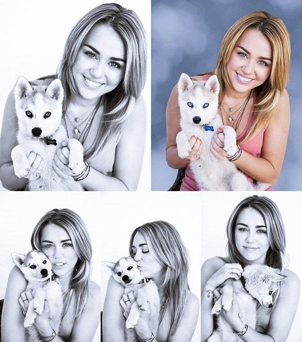 21 Février 2012 •  Miley est allée déjeuner chez Stanley's à Sherman Oaks avec des amis.