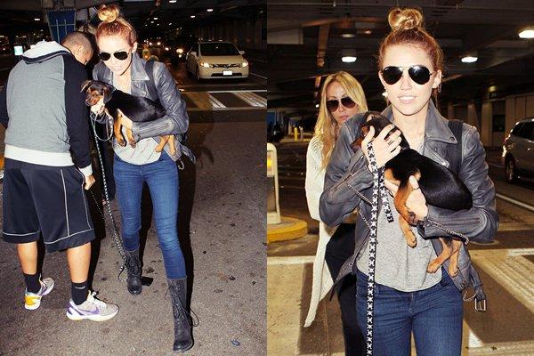 15 Mai 2012 •Miley a été photographiée quittant son hôtel de Miami Beach pour se rendre en studio d'enregistrement. Elle préparerait son quatrième album solo ! Une fan qui a eu la chance de rencontrer Miley et a pu discuter avec son manager, qui lui a révélé qu'il « réaliserait tous les rêves de Miley » avec cet album, qui aura des sonorités pop/hip-hop.