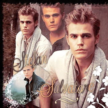 ‡ VAMPIREDIARIESWEB ________#Article Personnage: Stefan Salvatore «You and Katherine have a lot more in commun than just your looks.»_____'.____~ _Création_ ¦ _Inspi décoration_ ¦ _Newsletter_