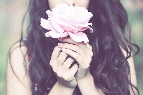 Regarde cette rose
