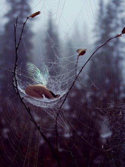 Toute la poésie cachée qui était en moi s'est réveillée