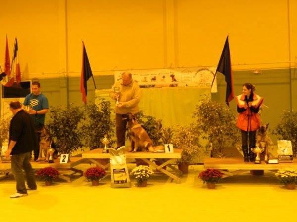 Championnat de Fédération Abbeville