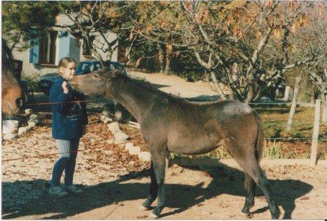 Printemps 1996, une rencontre qui va changer ma vie de cavalière !