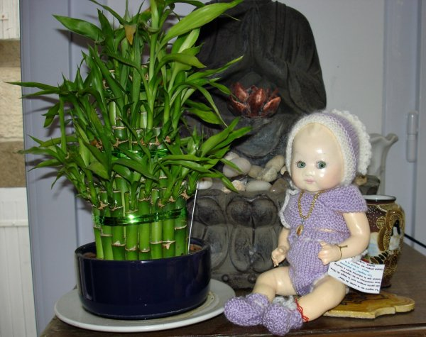 """Jany suite ...  Plus achat de """" Bambino petit frère de Bleuette"""