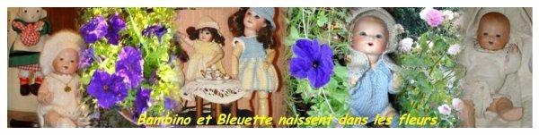 Ma Passion mes Poupées et Bambino Petit Frère de Bleuette