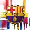 fan-du-fc-barcelona