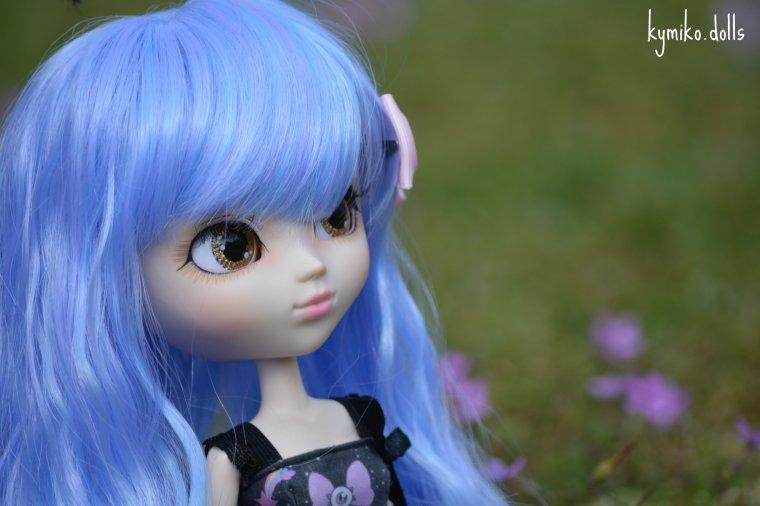 Fleures bleues et nature sombre...