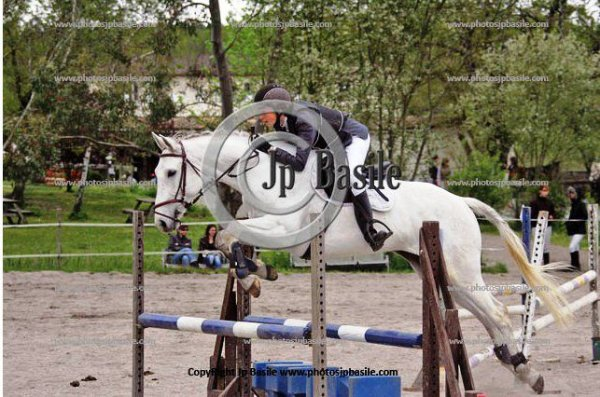 Résultats du concours complet à Leognan 10/04/11