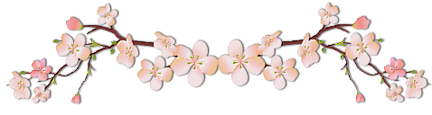 Fiche : Ame Shiroi Hoshi