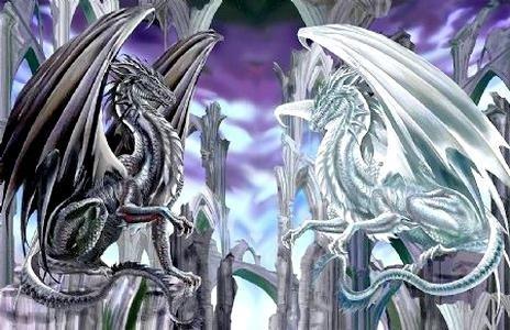 Fiche : L'héritier dragon