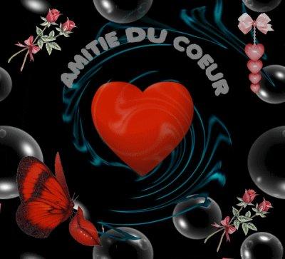 **Bonne saint valentin à tous**