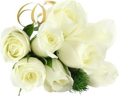 Favori fleure d'amitié pour mes amis - Blog de nabilouze26 FC46