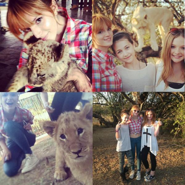 Nouvelles photos de Bella en Afrique du Sud