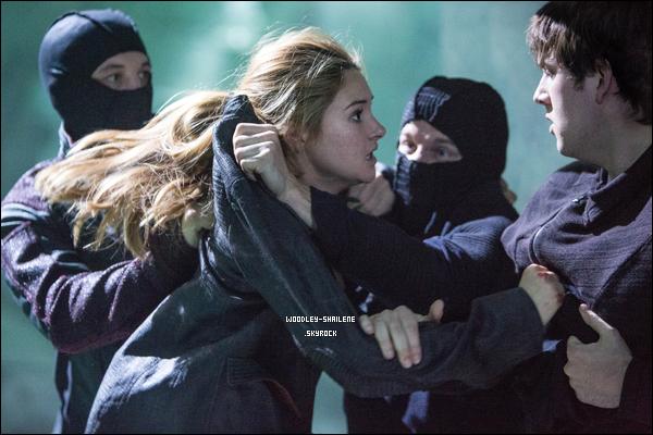 s Film > Divergente : s