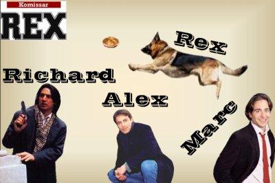 Bienvenu sur le blog consacrer a Rex chien flic