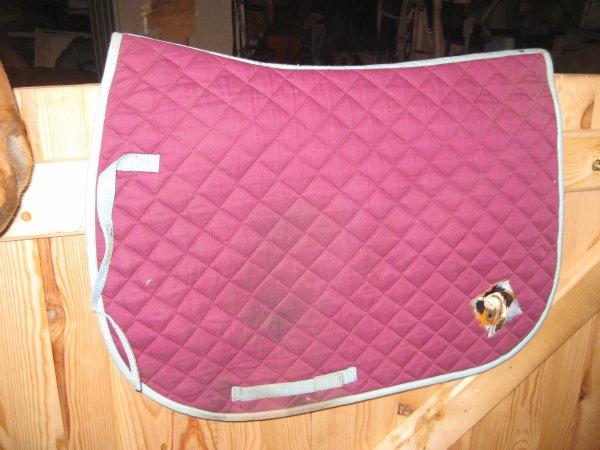 tapis de selle violet liseré turquoise avec ecusson