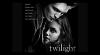 Fascination - Spotlight