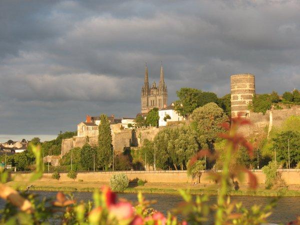 CATHEDRALE SAINTE-MAURICE (Angers - Maine-et-Loire)