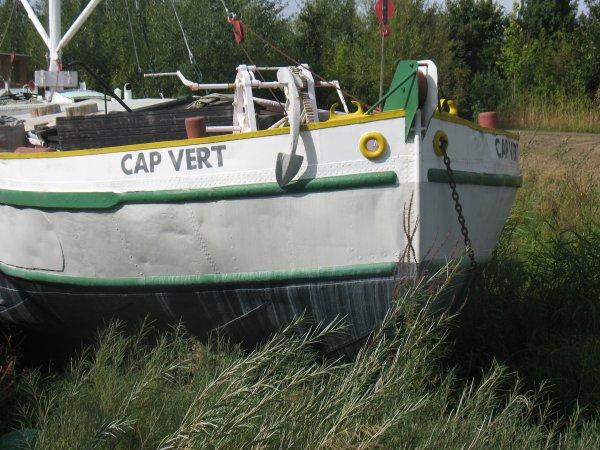 Cap Vert - Cap Loire (Montjean-sur-Loire - Maine-et-Loire)