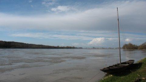 La Loire (La Ménitré - Maine-et-Loire)