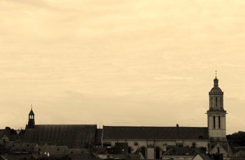 Angers, Ville d'Arts & d'Histoire (Maine-et-Loire)