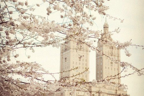 Mercredi 16 mai 2012