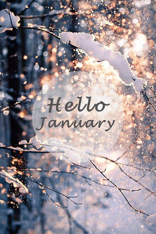 La Directioner du mois de Janvier !