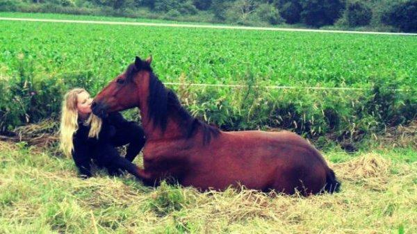 Mon cheval Danao et moi (l)