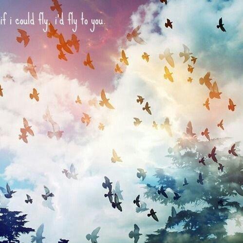Vole, vole mon amour puisque le notre est trop lourd, puisque rien ne te soulage, vole à ton dernier voyage. Lâche tes heures épuisées, vole, tu ne l'as pas volée. Deviens souffle, sois colombe pour t'envoler. Vole, vole petite flamme, vole mon ange, mon âme. Quitte ta peau de misère, va retrouver la lumière.
