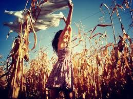 Les rêves vous donnes des envies impossible.