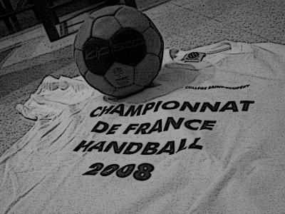 ♥  Handball : Le Championnat de France  ♥