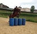 Photo de Equitatiiion