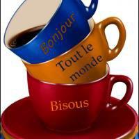 Bonjour les amis(ies) je viens vous servir le café de bon matin ! bisous.