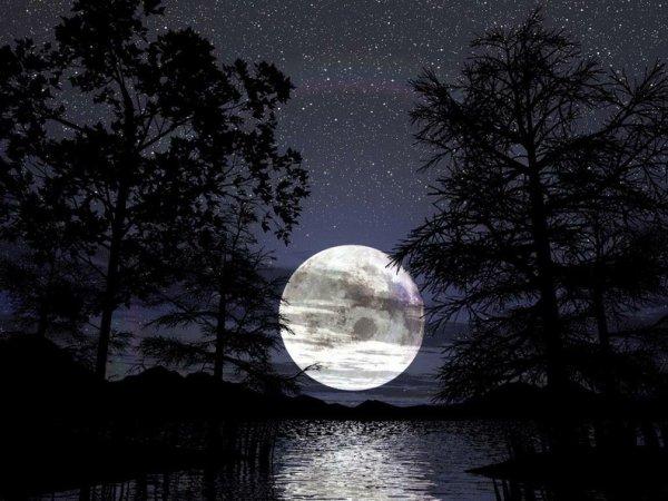 J'aime voir la nuit éclairé ainsi, me promener au clair de lune quelle beauté!