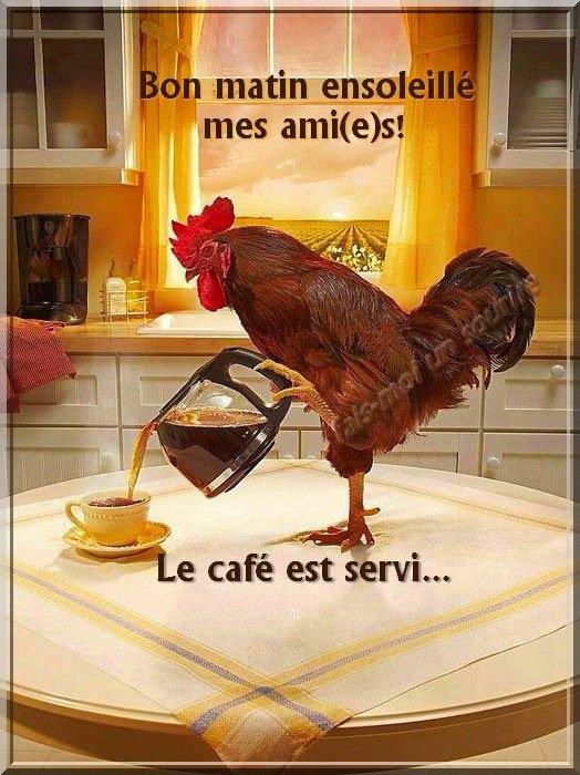 Bonjour je viens vous servir le café pour bien démarrer la journée ! une exellente journée mais amis(ies). kissous.