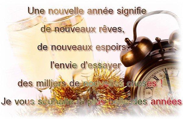 je vous souhaite une bonne et heureuse année 2017 ainsi qu'une bonne santé, que vos voeux les plus chers se réalise, bisous  les z'amis (ies).