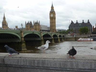 mon doudou et moi à London ...