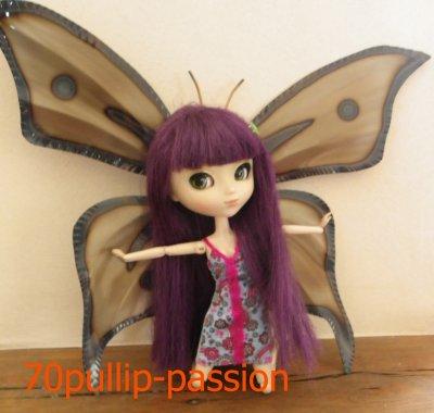 L'ange des papillons est né....=3