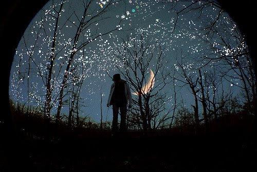 Ne pleurez jamais d'avoir perdu le soleil, les larmes vous empêcheront de voir les étoiles.