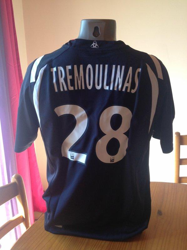Flocage Tremoulinas 28