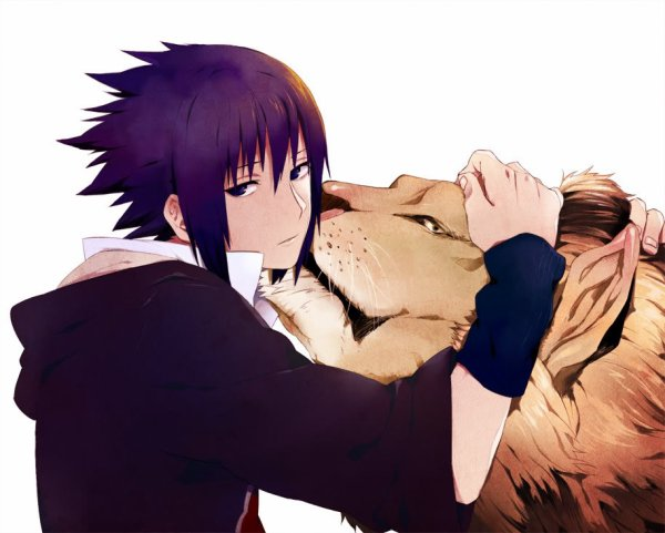Sasuke lion