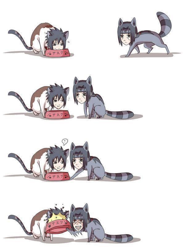 Pauvre Sasuke xD