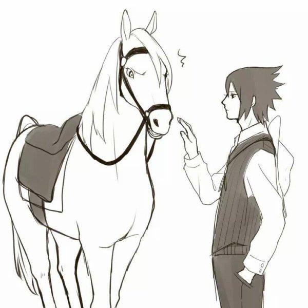 "Pauvre Sasuke :""D"