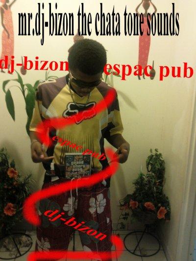 mr.dj-bizon (espace pub)