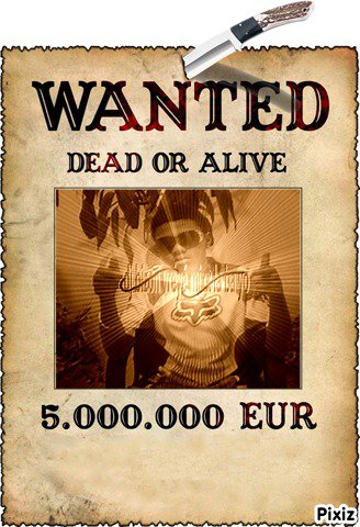 wanted (dj _bizon)